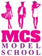 Curs Modeling – MCS Model